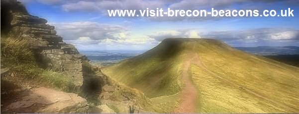 Dog Friendly Accommodation in the Brecon Beacons